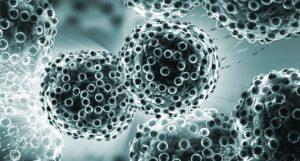 cancer molecules